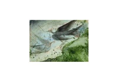 Art Card 2006